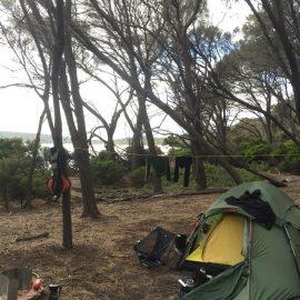 Camping on Freycinet Island